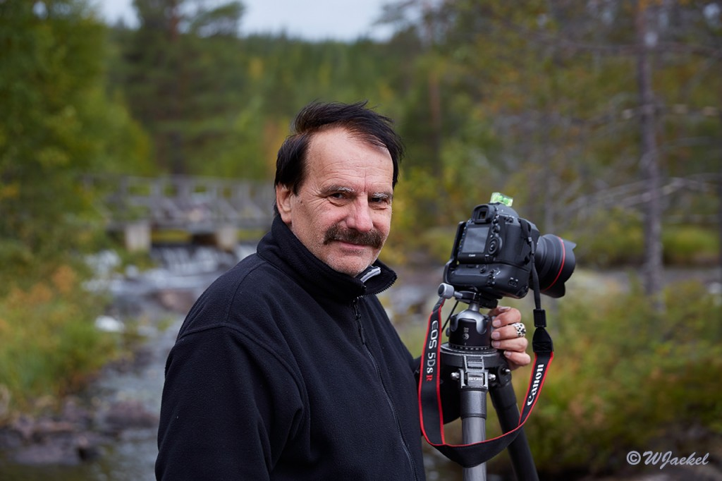 Nature photography in the Hamra Nationalpark, Sweden