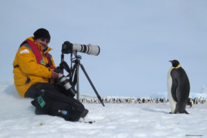 photographing Emperor Penguins on Snow Hill Island, Antarctica